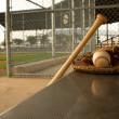 Baseball Bat and Glove in the Dugout — Stock Photo #12329269