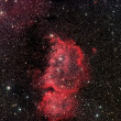 Emperor Nebula ic1848 — Stock Photo #12395184