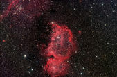 Emperor Nebula ic1848 — Stock Photo