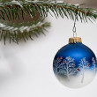 Christmas Ornament — Stock Photo #12411182