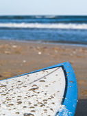 Waxed Surfboard — Stock Photo