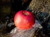 Fresh apple in streaming splash water — Stock Photo