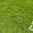 Recycle on Green grass,  texture background — Stock Photo