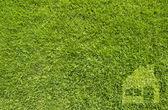 Ikonen hem på grönt gräs, textur bakgrund — Stockfoto