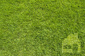 Icon home on green grass, texture background — Stock Photo