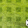 Football soccer on grass background — Stock Photo #11680031