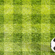 Football soccer on grass background — Stockfoto