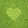 Heart on Green grass,  texture background — Stockfoto