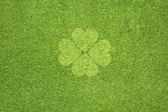 Leaf on green grass texture and background — Stock Photo