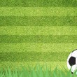 Football soccer on grass background — Stock Photo