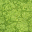 Royalty-Free Stock Photo: Chef icon on green grass texture and  background