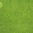 Royalty-Free Stock Photo: Comment icon on green grass texture and  background