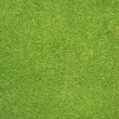 Phone icon on green grass texture and background — Stock Photo