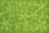 Christmas icon on green grass texture and background — ストック写真