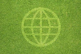 Global icon on green grass background — Stock Photo