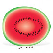 Watermelon slice on white background — ストック写真