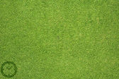 Clock icon on green grass texture and background — Stock Photo