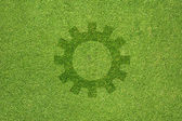Gear icon on green grass texture and background — Stock Photo