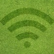 Wireless icon on green grass texture and background — Stock Photo #12185559