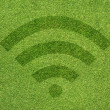 Wireless icon on green grass texture and  background — Stock Photo