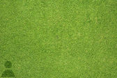 Man icon on green grass texture and background — Stock Photo