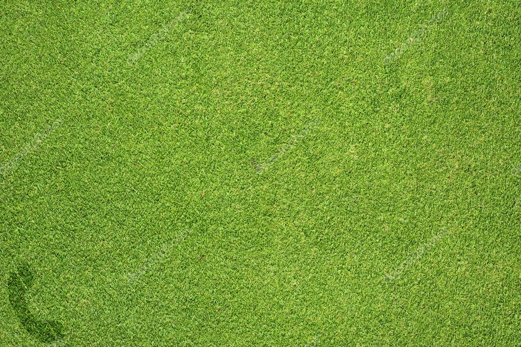 Phone icon on green grass texture and  background — Stock Photo #12194089