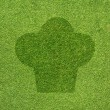Cook icon on green grass texture and  background — Lizenzfreies Foto