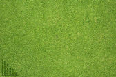 Graph icon on green grass texture and background — Stock Photo