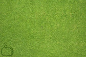 Television icon on green grass texture and background — Stock Photo