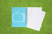 Buch mit tv-icon auf gras hintergrund — Stockfoto