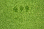Balloon icon on green grass texture and background — Stock Photo