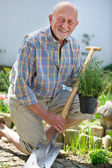 Senior man gardening — Stockfoto