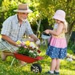 Gardening — Stock Photo #10946996