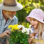 Gardening — Stock Photo #10947223