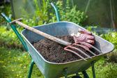 Jardinería — Foto de Stock