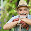 Senior gardener with a spade — Stock Photo #11440175