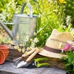 Gardening — Stock Photo #11440566