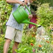 Watering the flowers in  the garden — Stock Photo