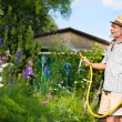 Watering the garden - Foto Stock