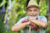 Senior gardener with a spade — Stock Photo