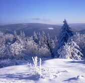 Neve e geadas nas terras altas 01 — Foto Stock