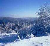 Sníh a jinovatka vysočině 02 — Stock fotografie