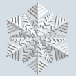 Snowflakes. Vector illustration. — Stock Vector #12019282