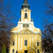 Catholic church in Gyula — Foto de Stock