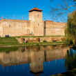 Стоковое фото: Castle of city Gyulin Hungary