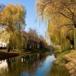 Стоковое фото: Riverside of Körös in Gyula