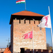 Tower of the castle Gyula — Stock Photo
