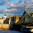 Thre Franz-Josef bridge in Budapest — Stock Photo #11559418
