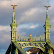 The peak of the Franz-Josef bridge — Stock Photo