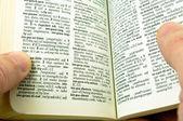 Dicionário de bolso — Foto Stock